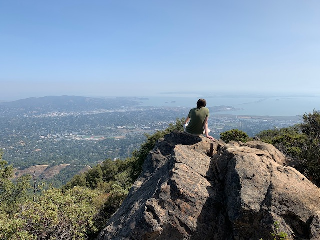 Scout enjoying the view from East Peak of Mt Tam